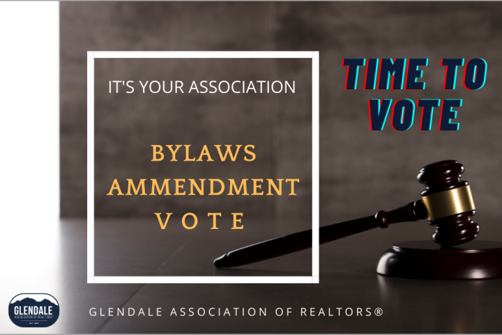 Time To Vote on GAOR Bylaws